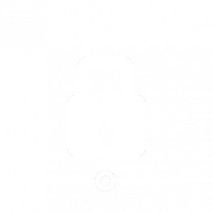 Icon Endpoint